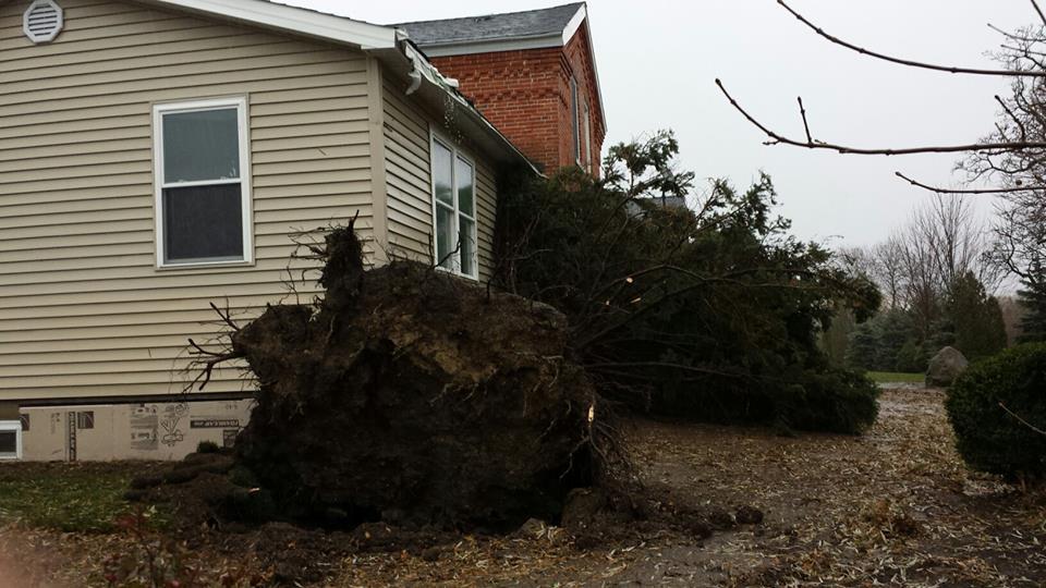 Debris & Storm Damage Cleanup